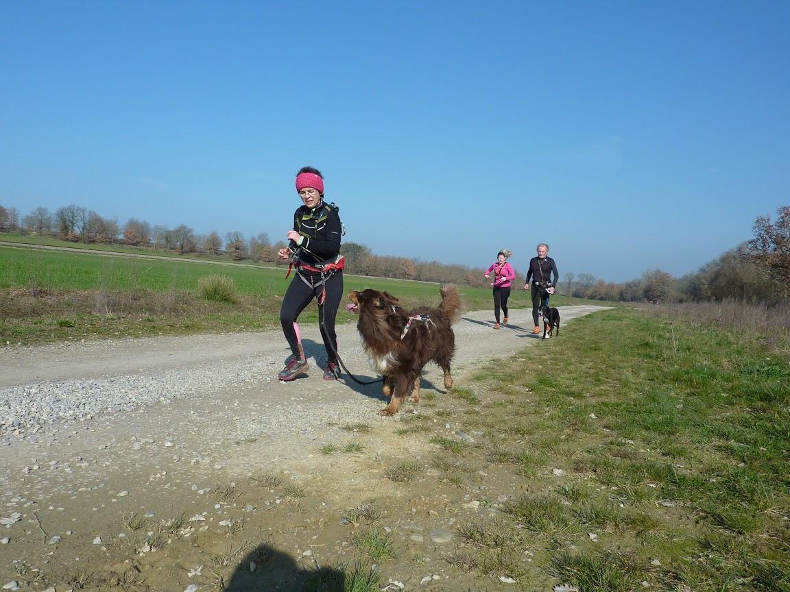 stage-trail-et-canicross-vibrez-montagne-11