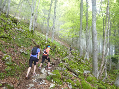 stage-trail-hautes-pyrenes-mai-2018-14
