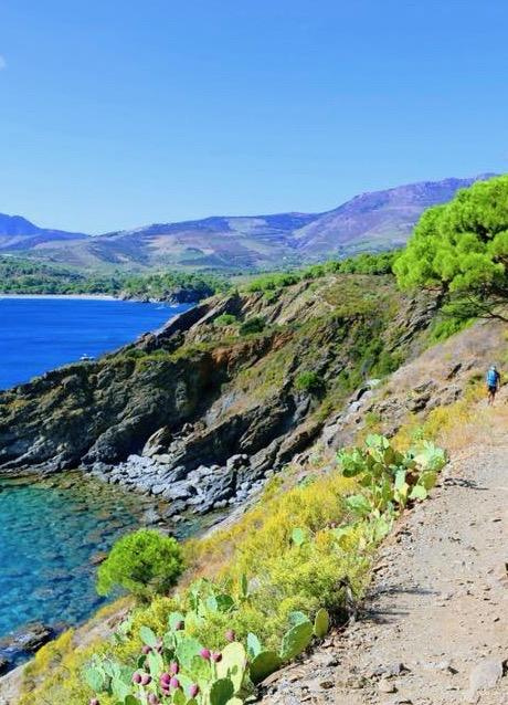 sortie-trail-entre-terre-et-mer-vibrez-montagne